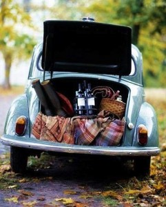 Picnic in VW