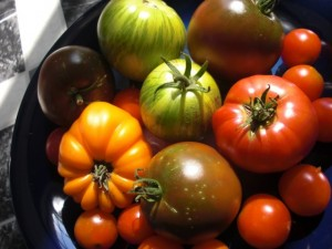 tomatoes heirloom in bowl