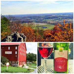 collage sugarloaf wine