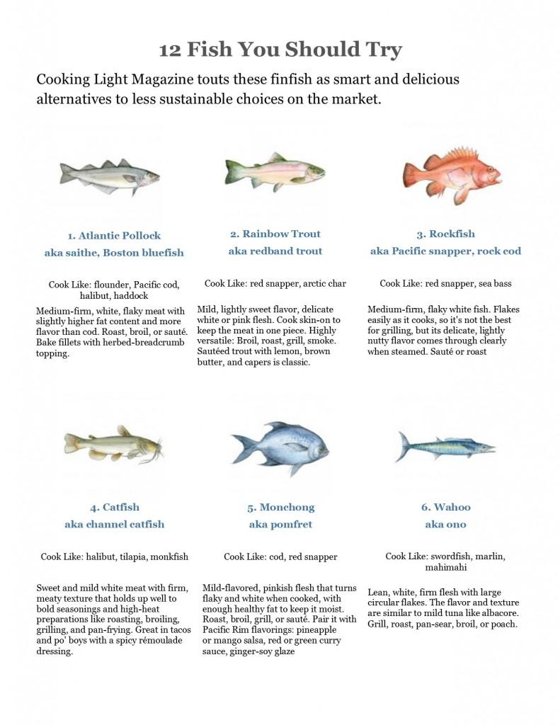 fish alternatives jpg