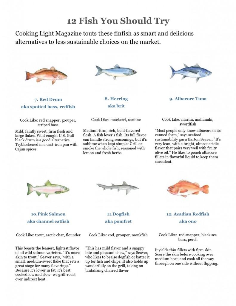 fish alternatives page 2 jpg