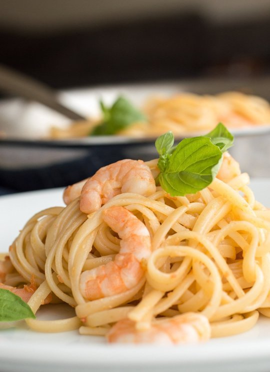 shrimp pasta white wine sauce